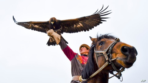 """A man participates in the hunting festival """"Salburun"""" in Tuura-Suu, a small village nestled among the mountains, about 250 km. (156 miles) south-east of Bishkek, Kyrgyzstan."""