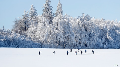 Cross country skiers enjoy a freezing sunny afternoon near Nove Mesto na Morave, Czech Republic.