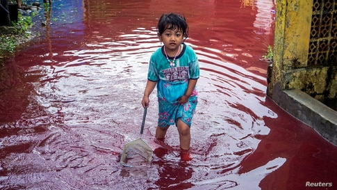 A girl walks through a flooded road with red water due to the dye-waste from cloth factories, in Pekalongan, Central Java province, Indonesia, Feb. 6, 2021