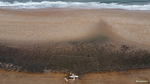 A whale is seen washed up on the shore of Blyth beach, Northumberland, Britain March 19, 2021.
