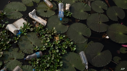 Discarded plastic water bottles pollute a canal in Kuttanadu, Kerala state, India, March 20, 2021.