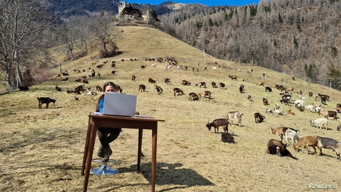 10-year-old Fiammetta attends her online lessons in the mountains as schools are closed due to COVID-19 restrictions in Caldes, northern Italy. (Val di Sole press office/ Handout)