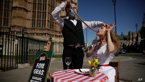 PETA (People for the Ethical Treatment of Animals) activists pose for photographs in a protest stunt calling on the British…
