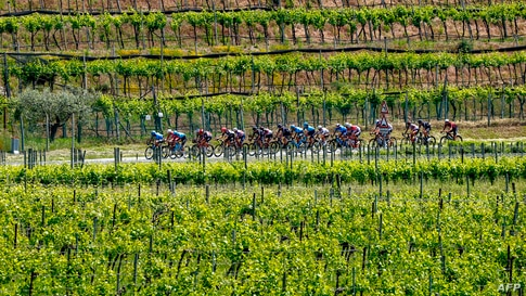 Riders cycle through vineyards near Peschiera del Garda during the 18th stage of the Giro d'Italia 2021 cycling race, 231km between Rovereto and Stradella, Italy.