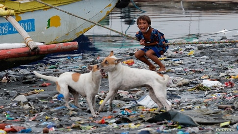 A boy reacts as dogs play along the riverbank of Pasig river in Manila, Philippines.