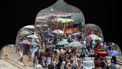 People visiting a cattle market to buy animals for the upcoming Muslim Eid al-Adha, or Feast of Sacrifice holiday, are seen through an arch of a nearby building, in Peshawar, Pakistan.