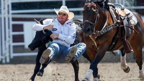 Curtis Cassidy of Donalda, Alberta, wrestles a steer in the steer wrestling event during the rodeo as the Calgary Stampede gets underway following a year off due to COVID-19 restrictions, in Calgary, Alberta, Canada, July 10, 2021.