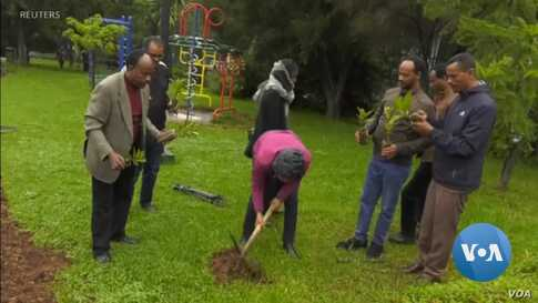Ethiopia Plants Trees to Curb Climate Change Effects
