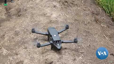 Farmers in Ghana Using Drones for Pest, Disease Surveillance