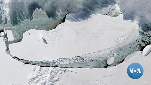 World's Biggest Iceberg on Collision Course With Wildlife Haven