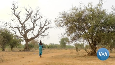 Sahel Child Marriage is Growing Rapidly