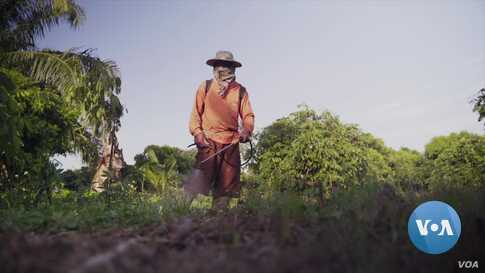 Toxic Herbicides to be Outlawed in Thailand Dec. 1