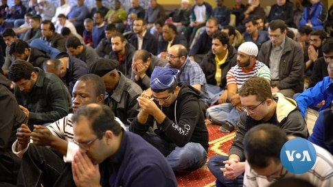 Huge Voter Turnout Expected in US Muslim Communities for Presidential Election