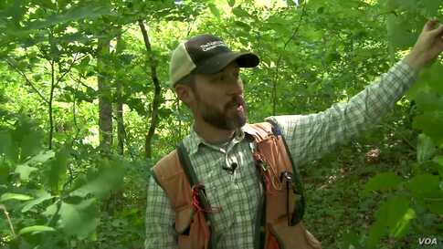 Conservation Group Saves Forests and Jobs