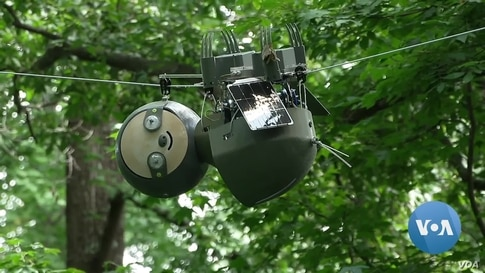 Robot Sloths Top Humans in the Race to Save Endangered Plants