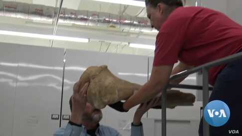 Archaeologist Tests 20,000-Year-Old Campfire Technique