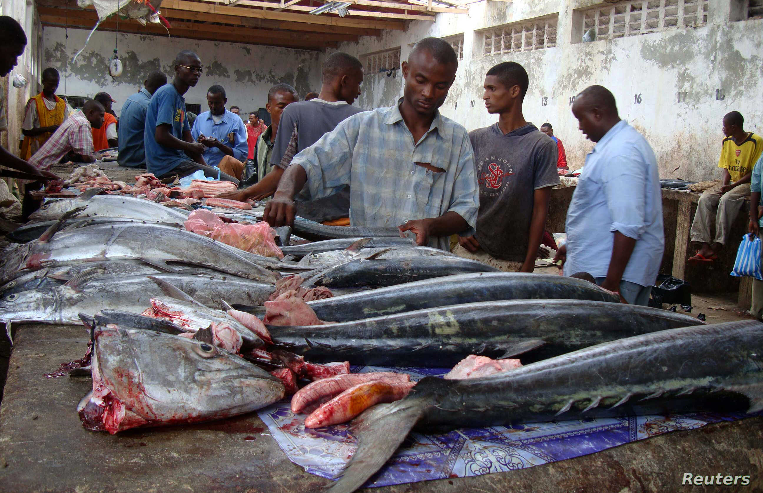 Rise in Illegal Fishing Threatens to Revive Somalia Piracy | Voice of America - English