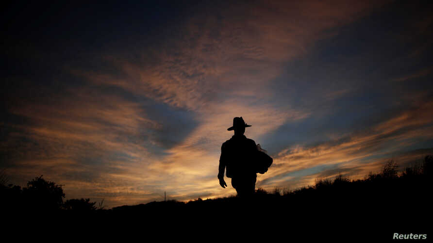 A migrant, traveling with a caravan of thousands from Central America en route to the United States, walks along the highway to Juchitan from Santiago Niltepec, Mexico, Oct. 30, 2018.