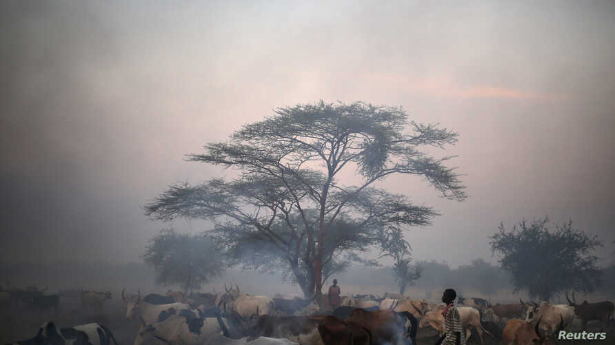 Smoke rises from burning dung as Dinka tribesmen stand guard near their cattle in the outskirts of Abyei, Oct. 30, 2013.