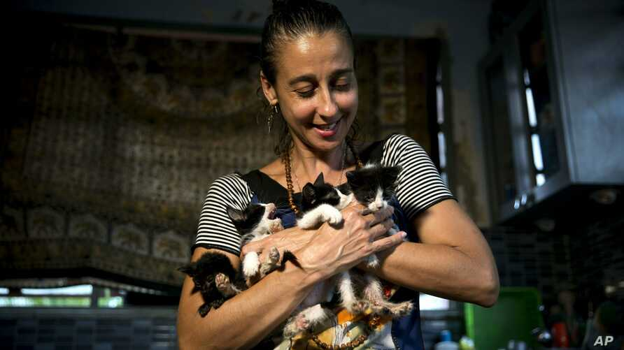 Grettel Montes de Oca Valdes, a professional dancer and founder of the group Cubans in Defense of Animals poses with four kittens that she has received in her house in Havana, Cuba, April 4, 2019.
