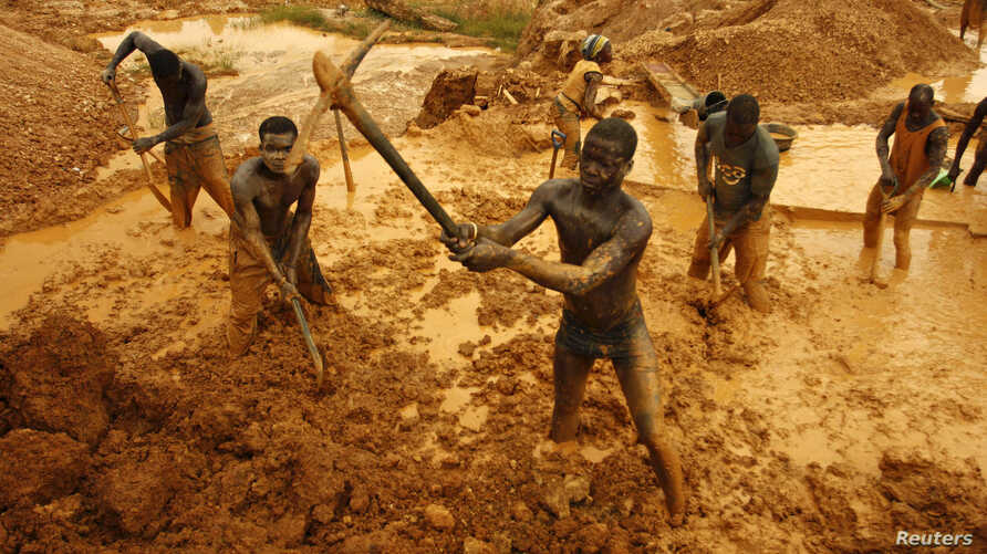 Artisanal miners dig for gold in an open-pit concession near Dunkwa, western Ghana February 15, 2011.