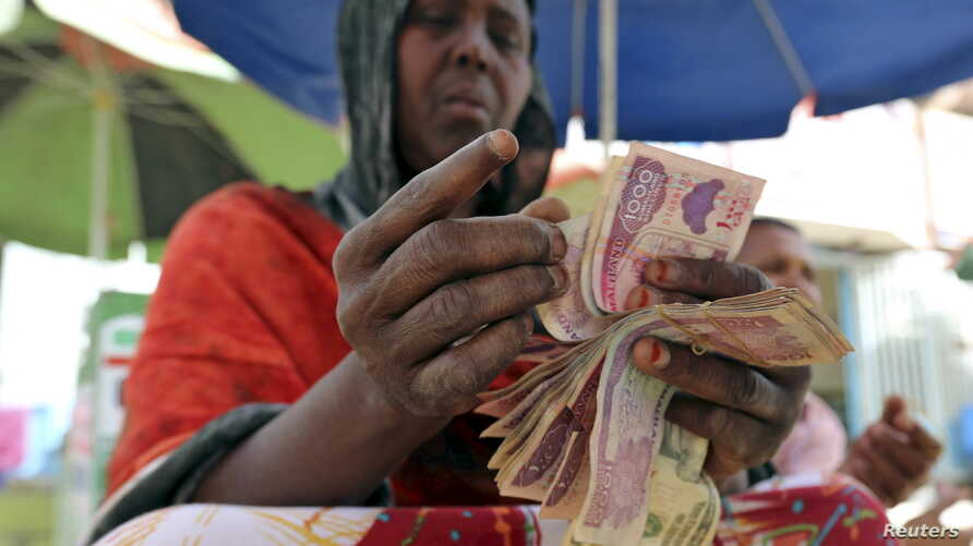 FILE - A money changer counts local currency notes at a local bureau where $100 US dollar exchanges for 750,000 Somaliland shillings in Hargeysa.