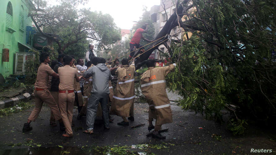 Policemen remove a tree that fell on a road after it was uprooted by strong winds in Chennai, India, Dec. 12, 2016.