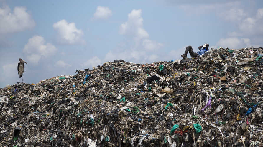 FILE - A man who scavenges for a living takes a rest next to a Marabou stork on top of a mountain of garbage at the dump in the Dandora slum of Nairobi, Kenya, Nov. 12, 2015.