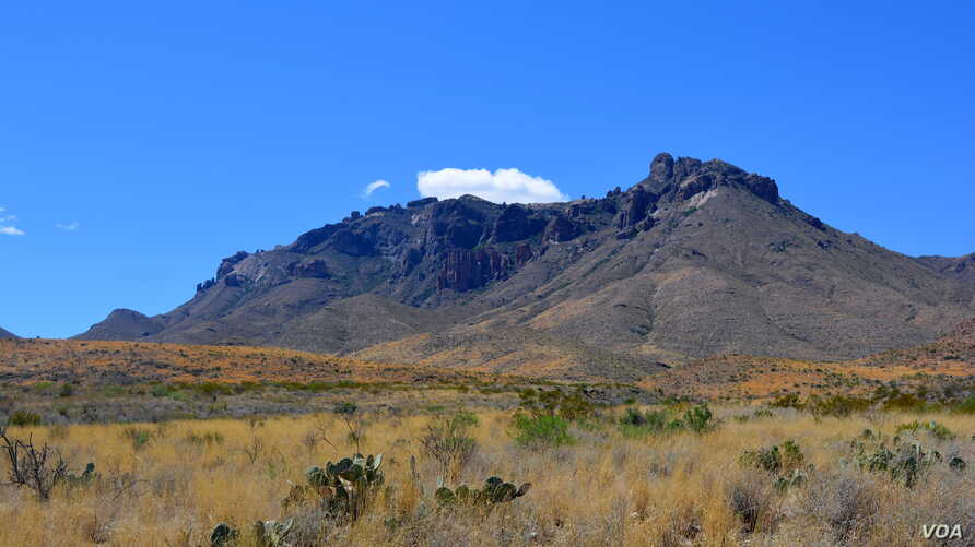 Big Bend National Park in southwestern Texas is a stark landscape of extremes, from hot, dry desert to cool mountain peaks.