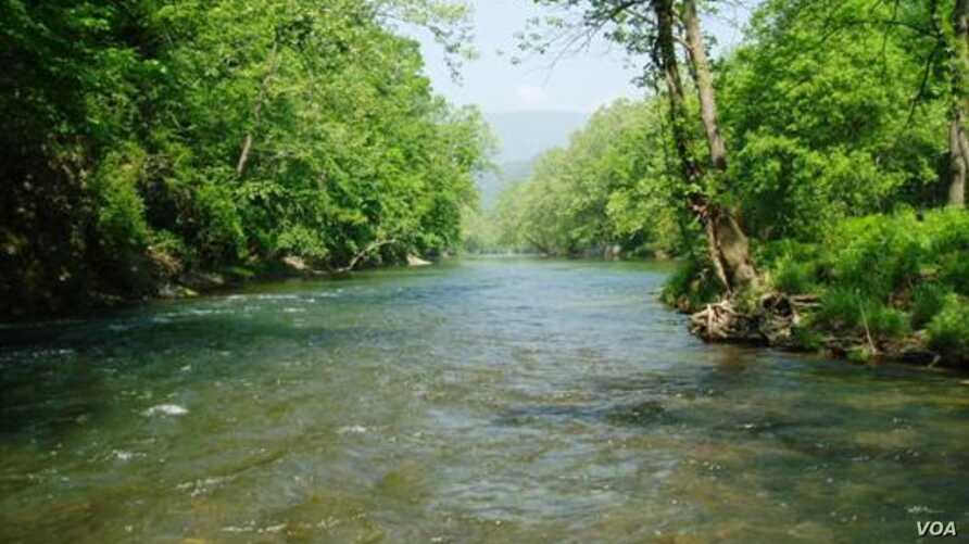 The US state of Virginia stocked the Jackson River with trout, but some waterfront homeowners are bothered by the presence of fishermen.(Virginia Dept. of Game & Inland Fisheries)