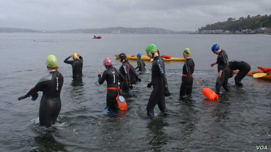 "Swimmers enter the water for a mid-October, 1.6 km ""excursion"" at Alki Beach in Seattle. (VOA / T. Banse)"