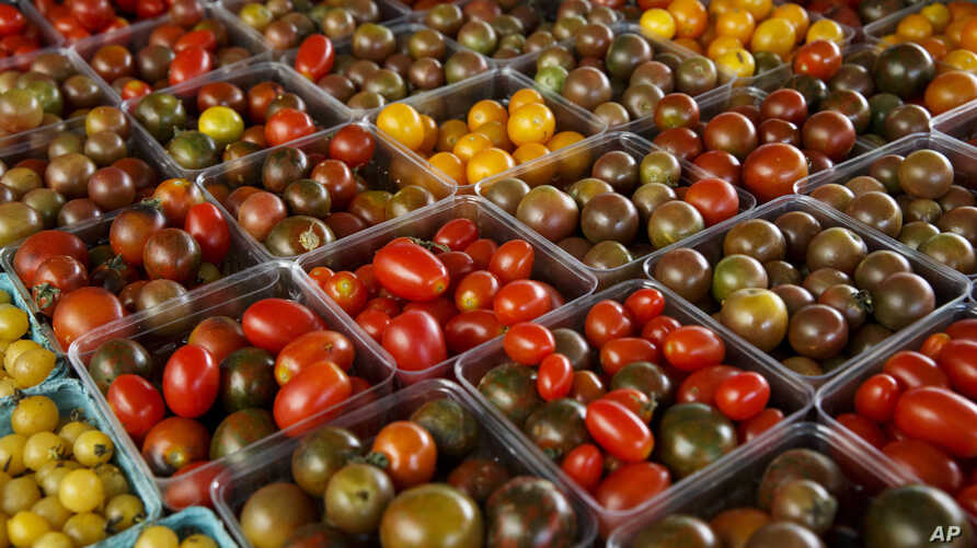 A variety of miniature tomatoes are displayed for sale at a farmers market in Falls Church, Virginia, Aug. 1, 2015.