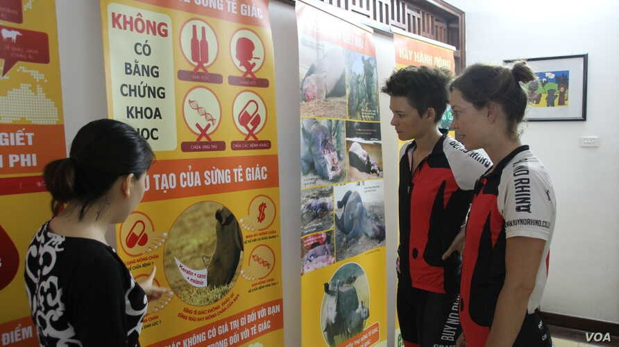 Vicky (right) Vanessa and Wiesenmaier visit Education for Nature - Vietnam, a conservation organization in Hanoi during their campaign to discourage Vietnamese people from buying products made from rhino horn.