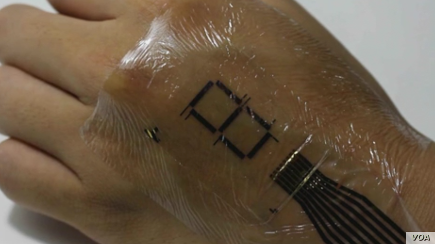 Japanese researchers have developed an e-skin that could one day revolutionize electronics, particularly biometric tracking. (Someya Laboratory)