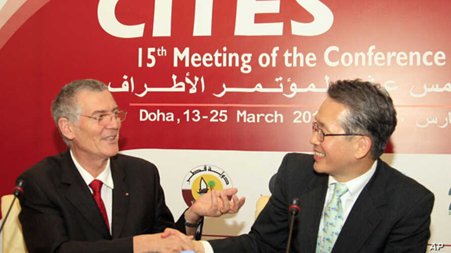 FILE -  Masanori Miyahara, head of Japan's delegation and the country's top fisheries official, right, shakes hands with Patrick van Klaveren, head of the Monaco delegation, during a meeting of the Convention on International Trade in Endangered Spec