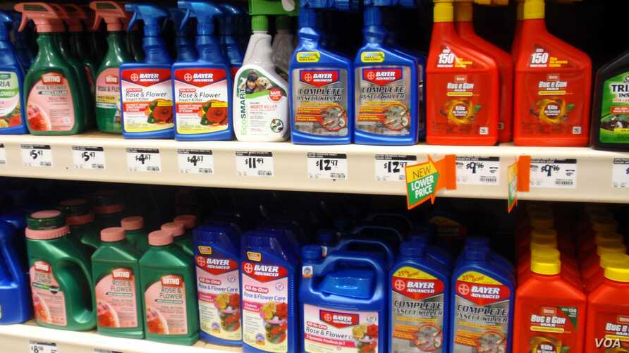 Neonicotinoid pesticide imidacloprid is the active ingredient in many retail insecticides such as these, April 2013 file image (T.Banse/VOA).