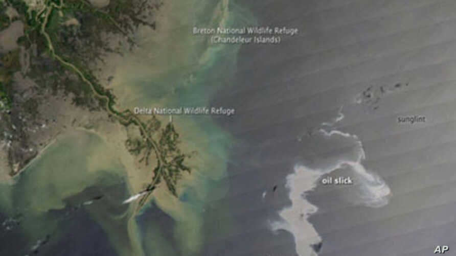 Satellite image of the Gulf of Mexico oil slick, 25 Apr 2010