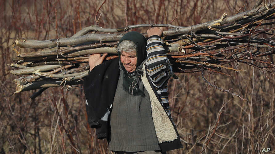 A woman carries tree branches for fire in Tancabesti, Romania, Dec. 8, 2016. Romanians will vote in parliamentary elections on Dec. 11, a year after a massive anti-corruption drive forced its last prime minister, Victor Ponta, from power, media mogul