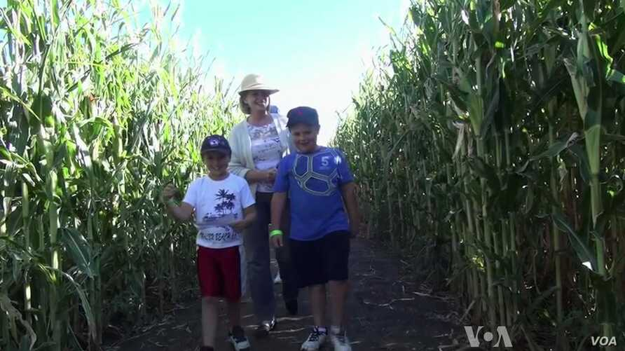 Farmers Cultivate Harvest-time Entertainments
