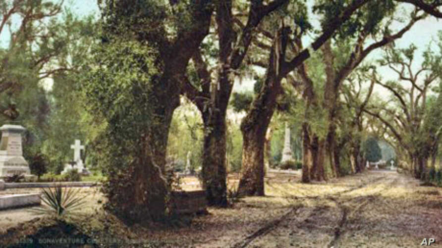 """The Bonaventure cemetery, the spooky Savannah cemetery that inspired the title of the book, """"Midnight in the Garden of Good and Evil."""""""