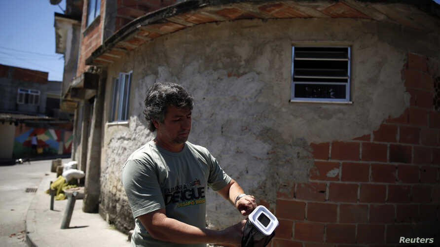 FILE - A technician releases Aedes aegypti mosquitoes with the dengue-blocking Wolbachia bacteria at the Tubiacanga neighborhood in Rio de Janeiro, Sept. 24, 2014.