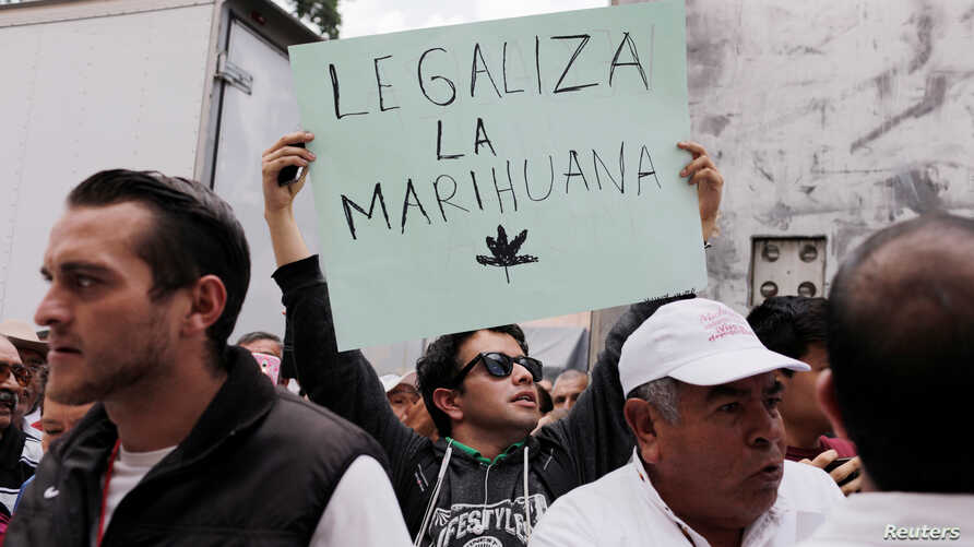 "A man holds a sign at a rally held by Mexico's President-elect Andres Manuel Lopez Obrador as part of a tour to thank supporters for his victory in the July 1 election, in Morelia, Mexico, Oct. 6, 2018. The sign reads. ""Legalize marijuana."""