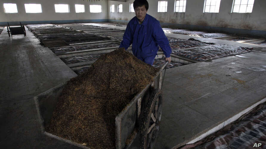FILE - A Chinese worker pushes a cart full of grain sorghum at a factory north of Beijing, Sunday, Jan. 27, 2008.