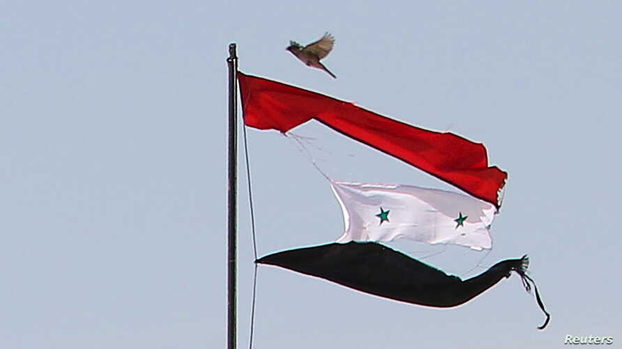 A bird flies near a torn Syrian national flag in the city of Qamishli, Syria, April 21, 2016.
