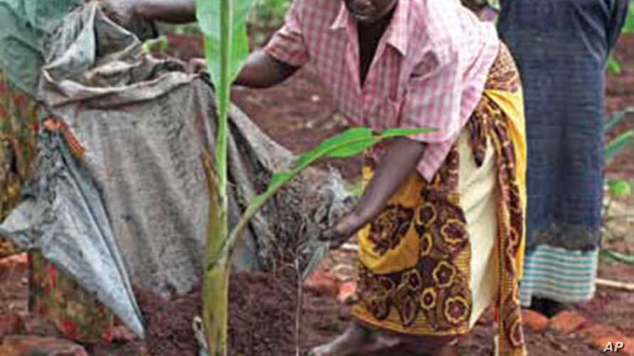 Bread for the World says women farmers need equal rights and equal access to resources.