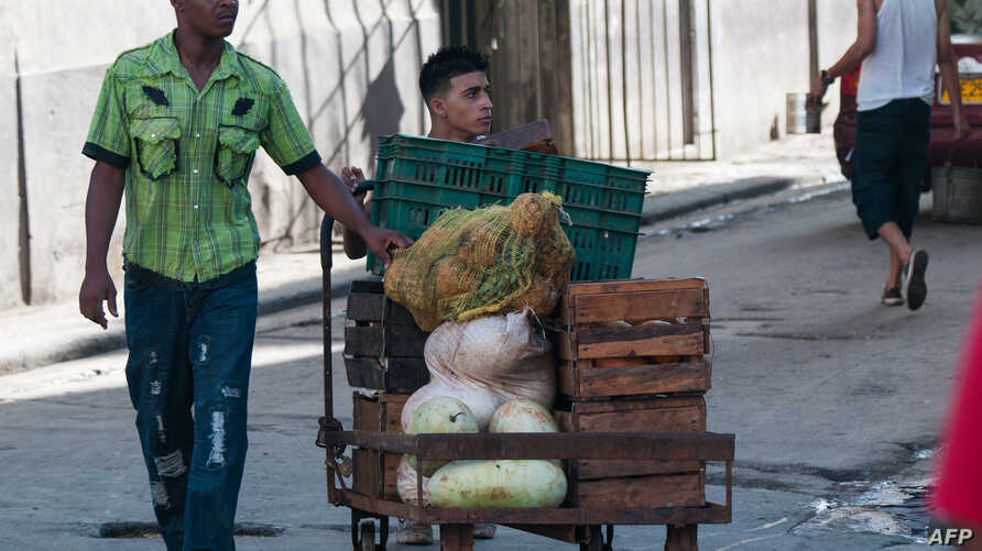 "Workers transport vegetables along the streets of Havana, Aug. 2, 2017. This week, the Cuban government suspended indefinitely the granting of new work licenses for the private sector as part of a process of ""improving"" an area of the economy that em"