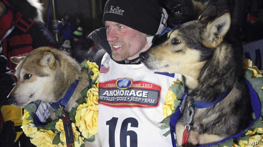 FILE - Dallas Seavey poses with his lead dogs Reef, left, and Tide after finishing the Iditarod Trail Sled Dog Race in Nome, Alaska, March 15, 2016.