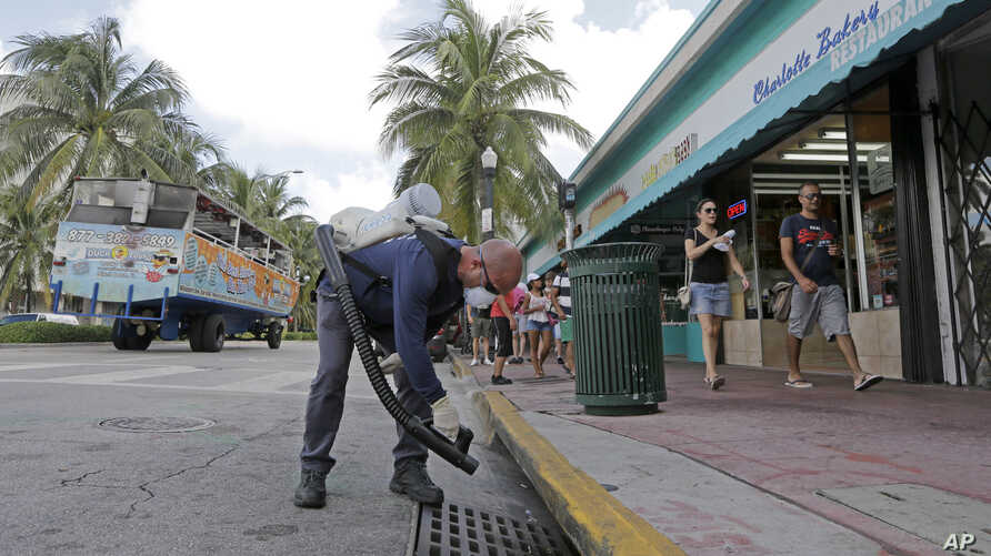 "Miami-Dade mosquito control inspector Yasser ""Jazz"" Compagines sprays a chemical mist into a storm drain, Tuesday, Aug. 23, 2016, in Miami Beach, Fla. The spread of the Zika virus has been limited in Florida thanks to aggressive mosquito control."