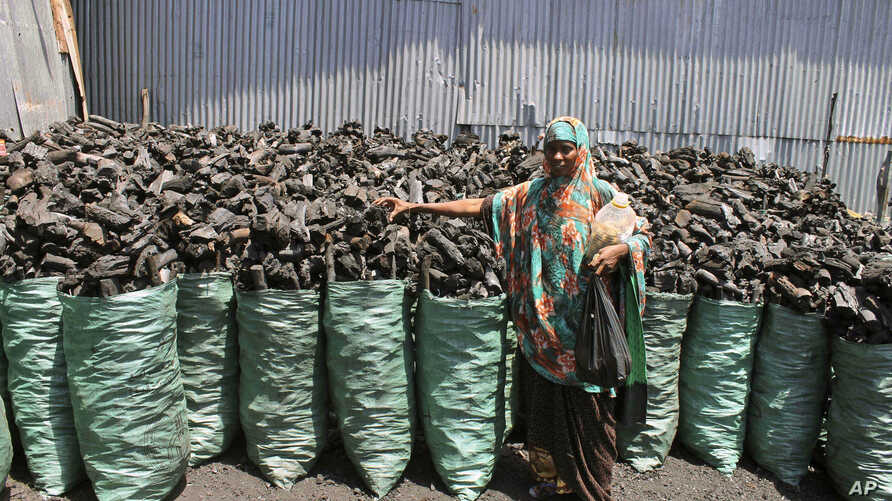 Thousands of sacks of dark charcoal sit atop one another in Somalia's southern port city of Kismayo, an industry once worth some $25 million dollar a year to the al-Qaida-linked insurgents who controlled the region, October 30, 2012.