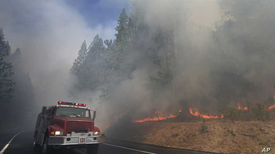 A fire truck drives past burning trees as firefighters continue to battle the Rim Fire near Yosemite National Park, California,  Aug. 26, 2013